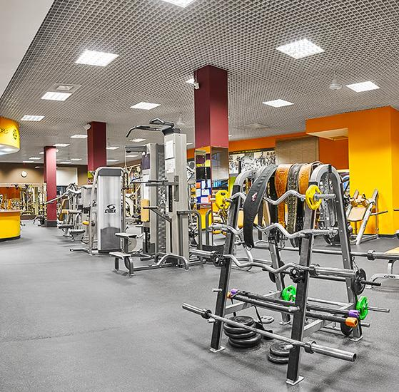 Gold,s Gym Lefort